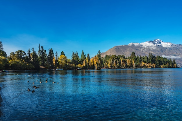 Queenstown, lake wakatipu in south island, new zealand in autumn.