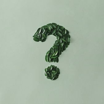Question mark formed of small fresh green leaves on a matching light green card with copy space for eco, zen or nature concepts