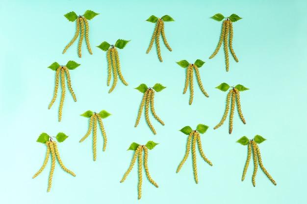 分離された緑の白rの芽