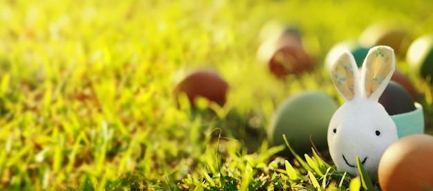 自然の中でウサギとカラフルなイースターエッグ。イースターコンセプトの背景。
