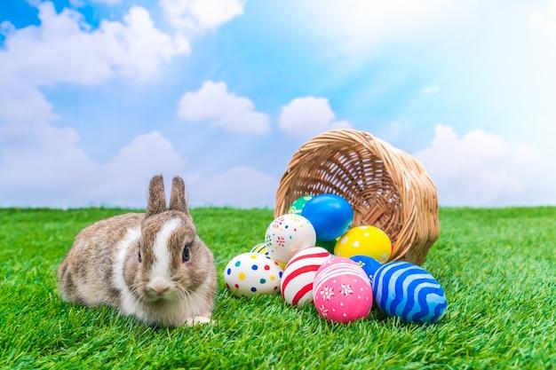 青い空と緑の草の中にウサギとイースターエッグ