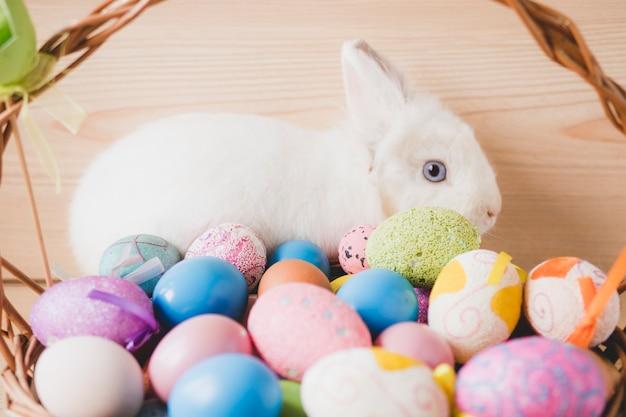 Кролик за корзиной с яйцами