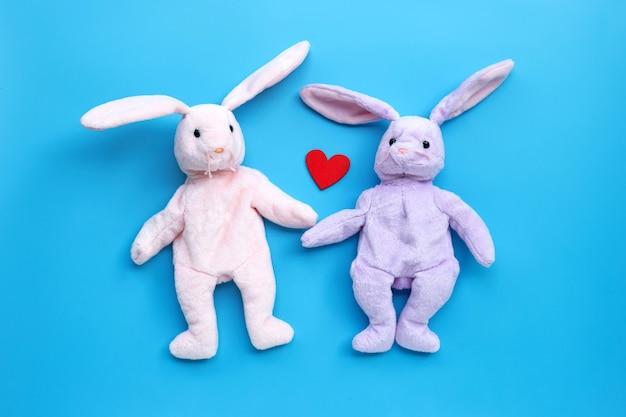 Rabbit toy couple on blue background.
