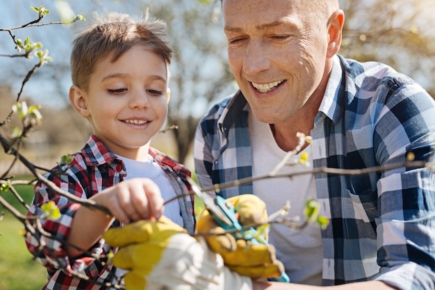 Radiant father and son looking after the trees by cutting the branches in a backyard garden