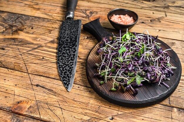 大根のマイクログリーン、緑の葉、紫色の茎