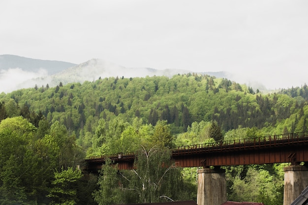 Железнодорожный мост в карпатах и лесу в солнечный день