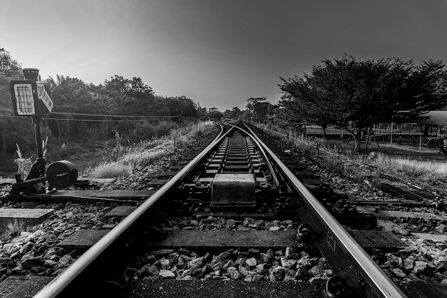 Railroad and railway train transportation with sky sunlight in forest background, black and white and monochrome style