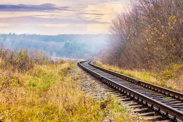 色とりどりの秋の木々が生い茂る森の中を走る鉄道