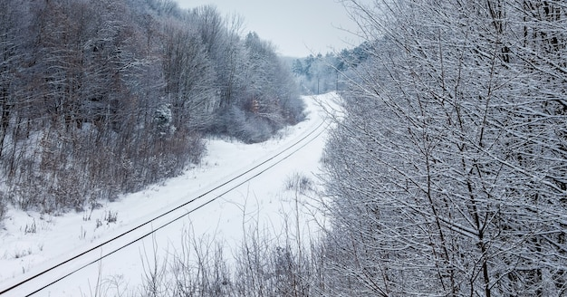 Railroad runs through the forest in winter after a snowfall_
