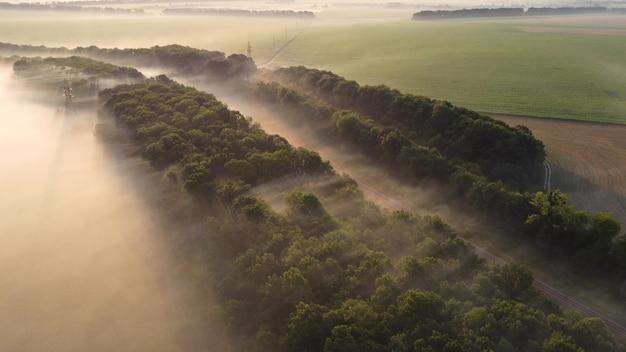 日の出の霧の中の線路と森。朝の風景の空撮。
