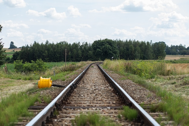 Railroad tracks near forest