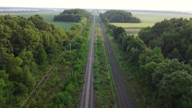 숲과 들판을 가로지르는 레일. 흙길, 철로 주변의 자연.