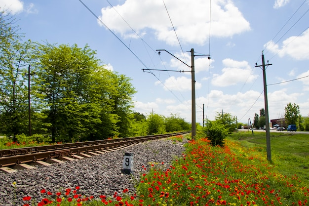 Вид на рельсы в грузии, железную дорогу и вокзал, линии и горизонт с маковым и желтым цветочным полем