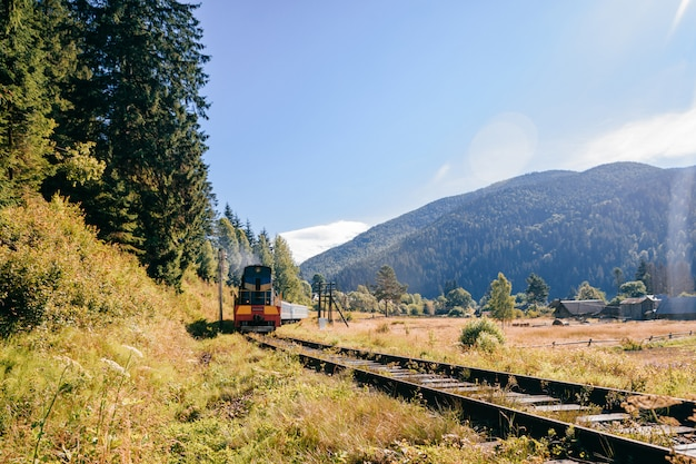 Railway among beautiful landscape. with riding train.