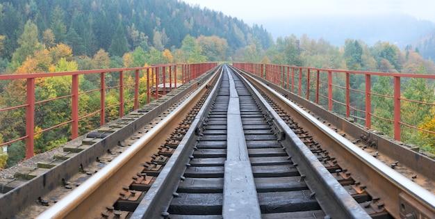 Railway on bridge across mountain river.
