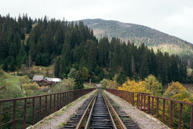 Railway bridge across a valley in the mountains in the typical ukrainian village of vorokhta