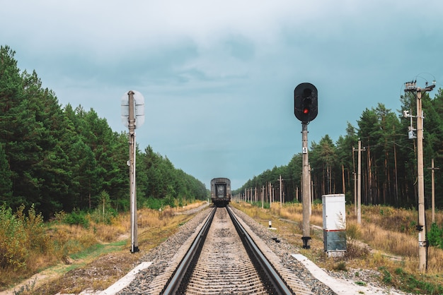 Railway carriage goes by rails in forest. poles with wires along rails. atmospheric vintage railroad landscape with traffic light.