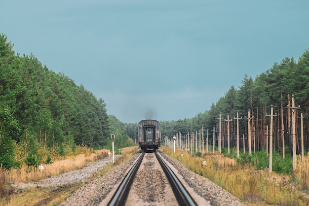 Railway carriage goes by rails in forest. poles with wires along rails.