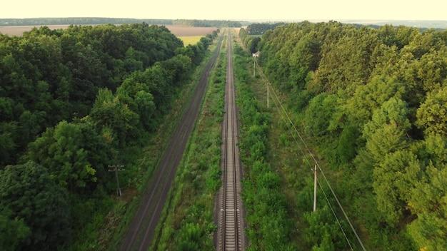 Железная дорога выходит из леса в поле.