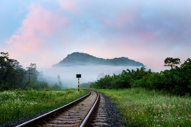 Railway in countryside.