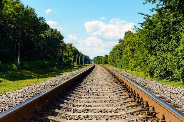 The railway goes to horizon, on both sides of the green dense forest.