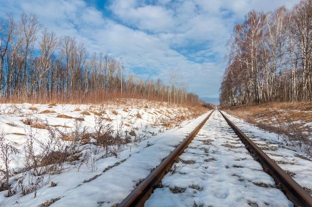 雪に覆われた森の真ん中で遠くへ向かう鉄道