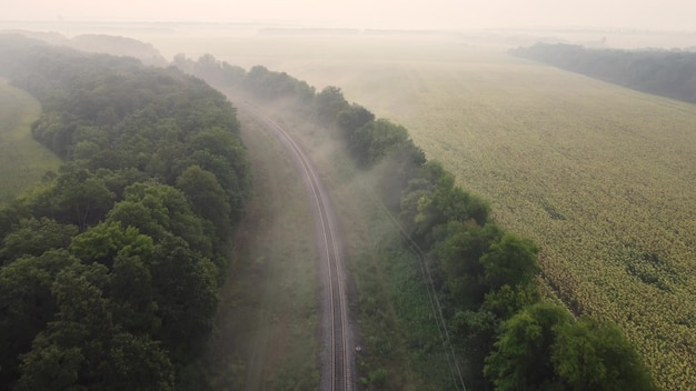 霧の中の鉄道。朝の秋の風景の上のドローン飛行の空撮。
