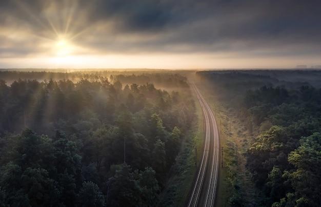 夜明けの夏の朝の森の鉄道。ドローンから撮影された素晴らしい夏の風景。霧と緑の松の枝を通して太陽の光が輝いています。