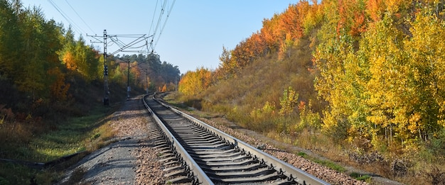 The railway passes through a beautiful autumn forest with colorful trees.