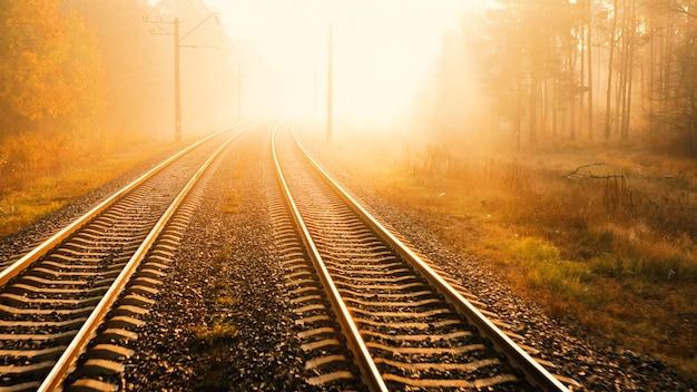 The railway runs through the autumn forest. the rays of the morning sun cut through the fog.