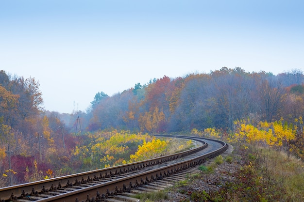 The railway track among colorful trees in the fall