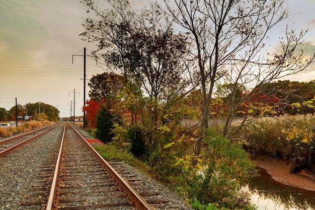 Железнодорожная колея красивый осенний лес яркий теплый