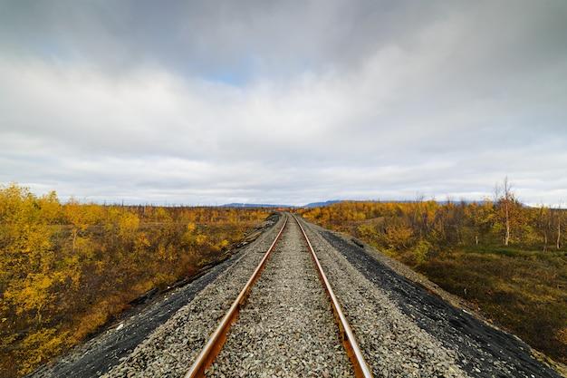 鉄道線路。北極圏ツンドラの晩秋。