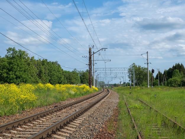 Railway tracks among yellow fields