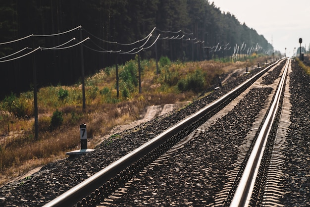 Railway traveling in perspective across forest.