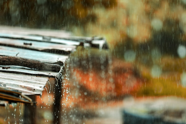 Rain flows down from a tin roof
