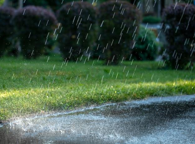 サマーパークで雨が降る