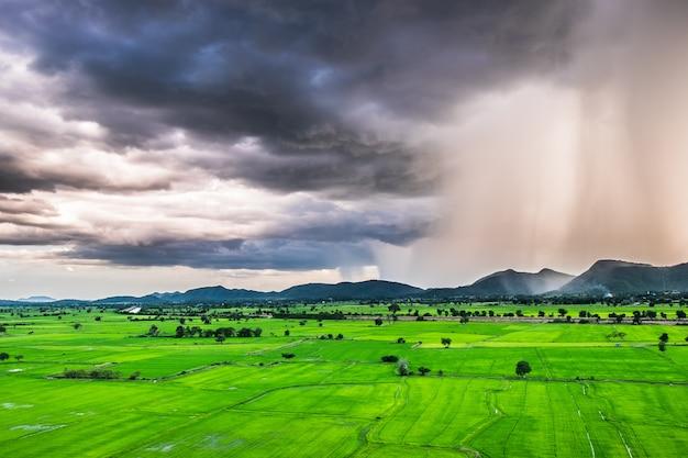 Rain storm fall mountain rice green field, kanchanaburi