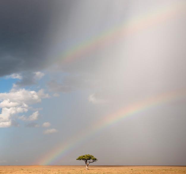 Радуга в национальном парке серенгети