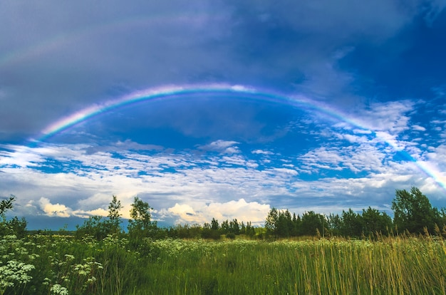 Rainbow in the sky over fields and forests after rain.