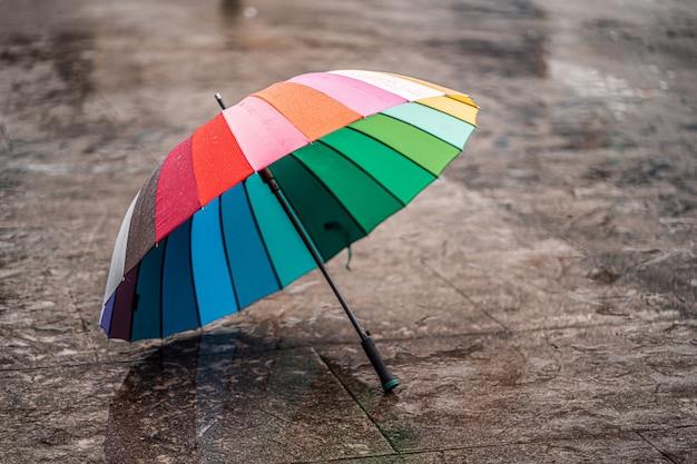 Зонтик радуги на влажном асфальте во время холода в дождливом дне осени осенью. защита от дождя