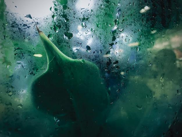 장마 비 배경에서 유리 창에 빗방울