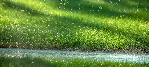 Капли дождя падают на асфальт и зеленую траву.