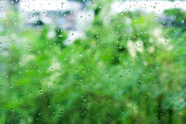 Капли дождя делают всплеск воды. и деревья выглядят зелеными.