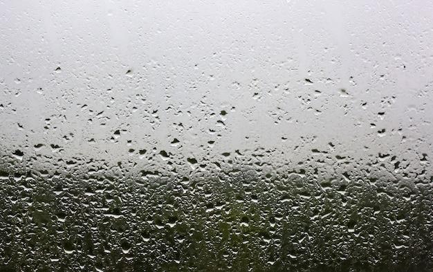 窓の外の窓ガラスに雨滴が降り注ぐと、緑の森と灰色の空が見えます。