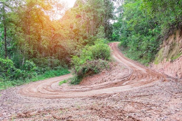 Дождливые лужи на грязной проселочной дороге весной