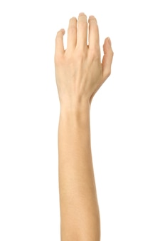 Raised hand for voting or reaching isolated