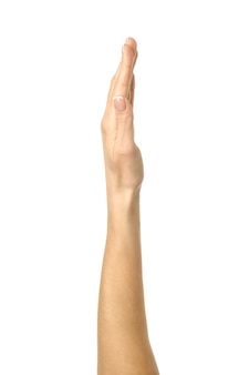Raised hand voting or reaching on white