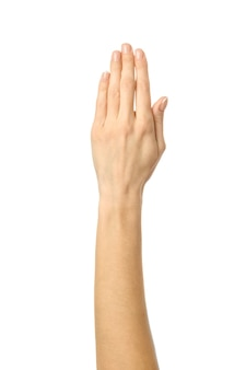 Raised hand voting or reaching. woman hand with french manicure gesturing isolated on white background. part of series