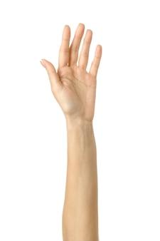 Raised hand voting or reaching